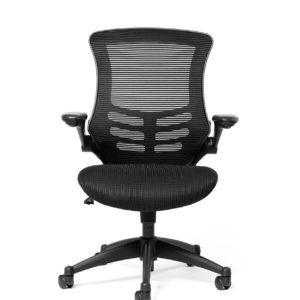 ergo boost mesh back chair