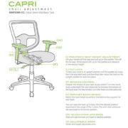 capri-adjustments