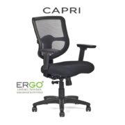 ergo-capri-task-chair-mm1133m-v2_angle-view