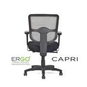 ergo-capri-task-chair-mm1133m-v2_rear-view
